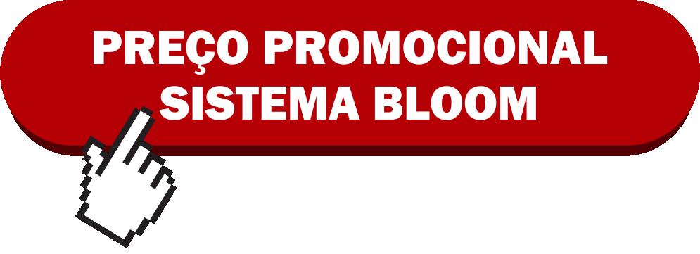 SISTEMA BLOOM FUNCIONA